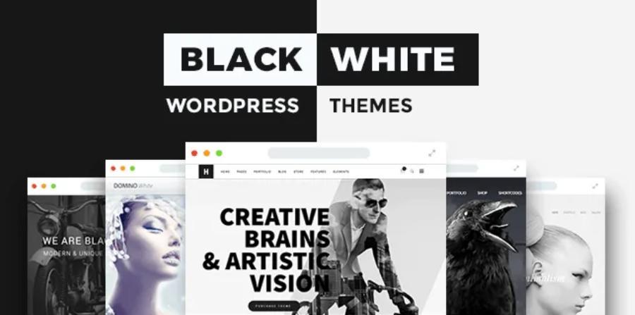 lập trình web wordpress Black & white
